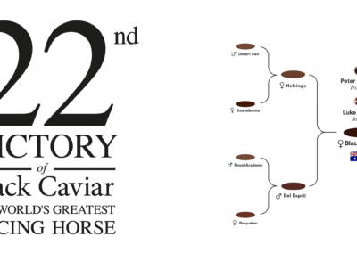 22nd-victory-of-black-caviar-martin-panchaud-01