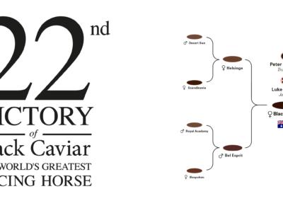 22nd-victory-of-black-caviar-martin-panchaud-01